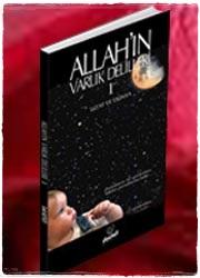 ALLAH'IN VARLIK DELİLLERİ